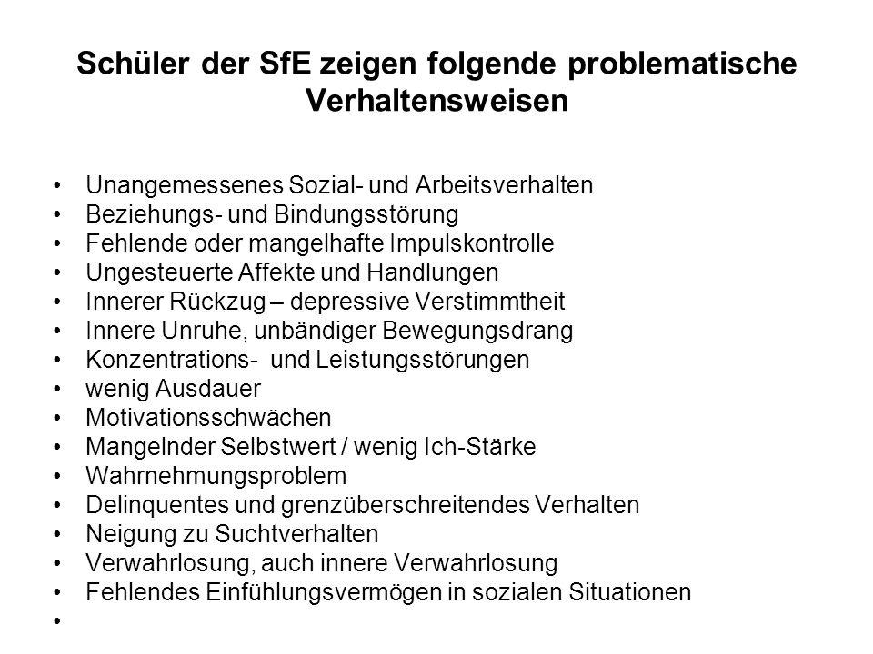 Schüler der SfE zeigen folgende problematische Verhaltensweisen