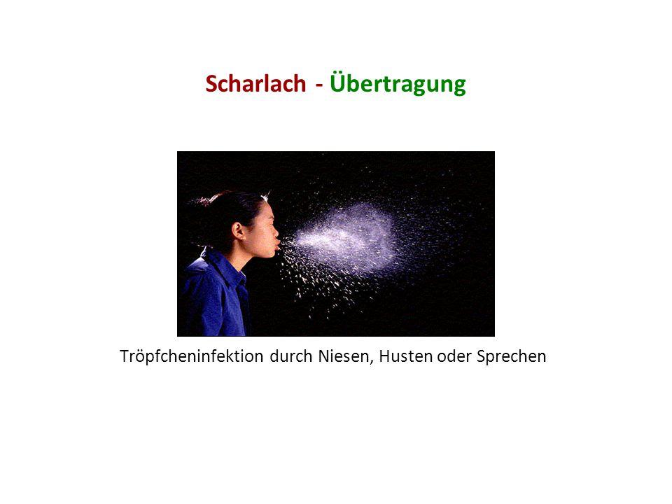 Scharlach - Übertragung