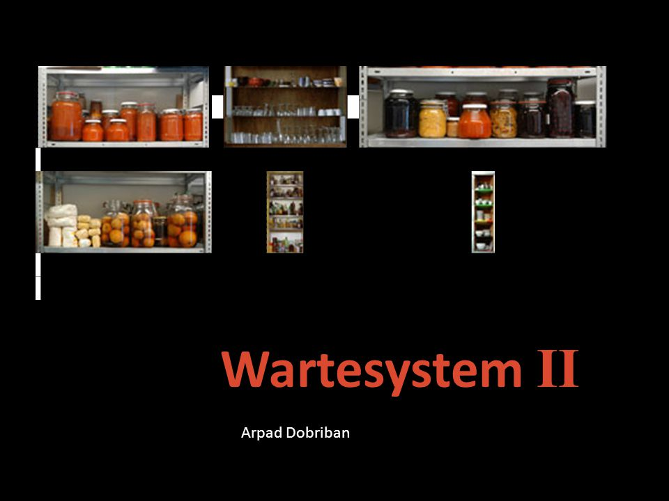 Wartesystem II Arpad Dobriban