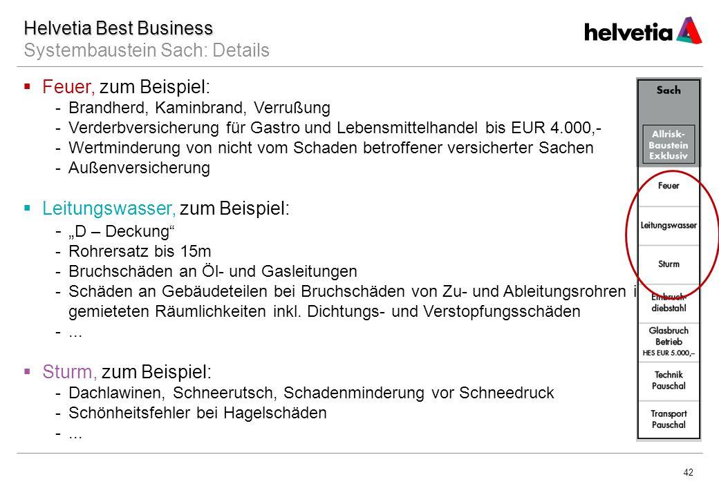 Helvetia Best Business Systembaustein Sach: Details