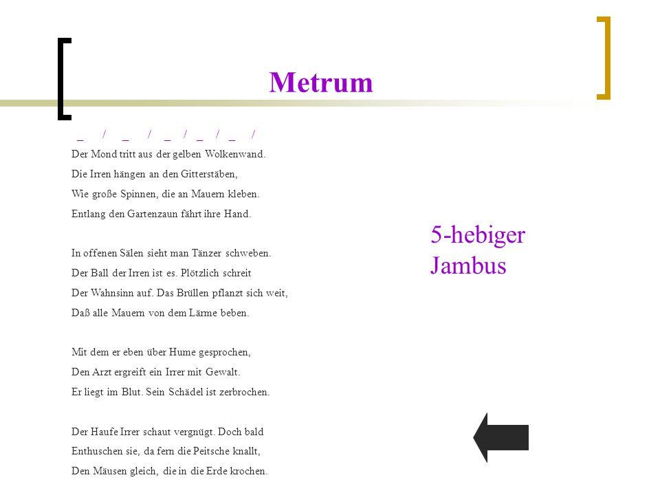 Metrum 5-hebiger Jambus _ / _ / _ / _ / _ /