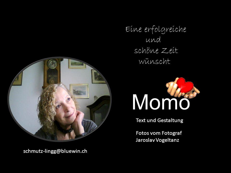 Momo Eine erfolgreiche und schöne Zeit wünscht Text und Gestaltung