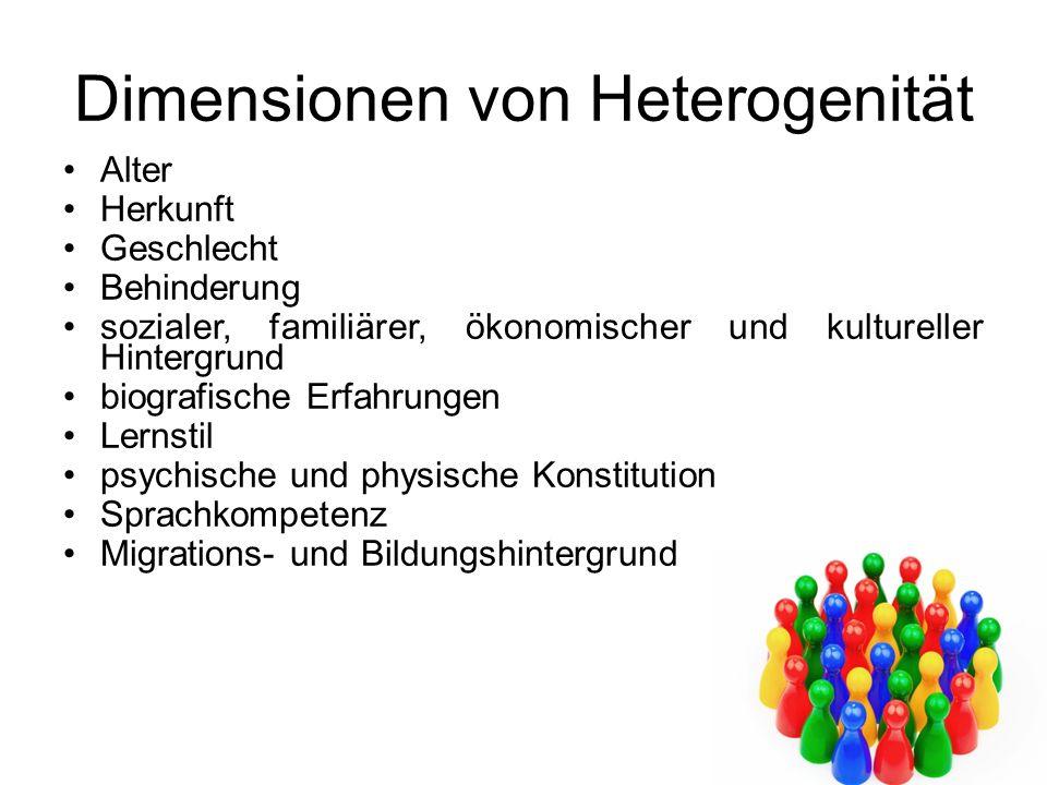 Dimensionen von Heterogenität