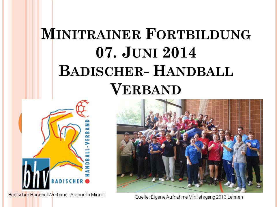 Minitrainer Fortbildung 07. Juni 2014 Badischer- Handball Verband