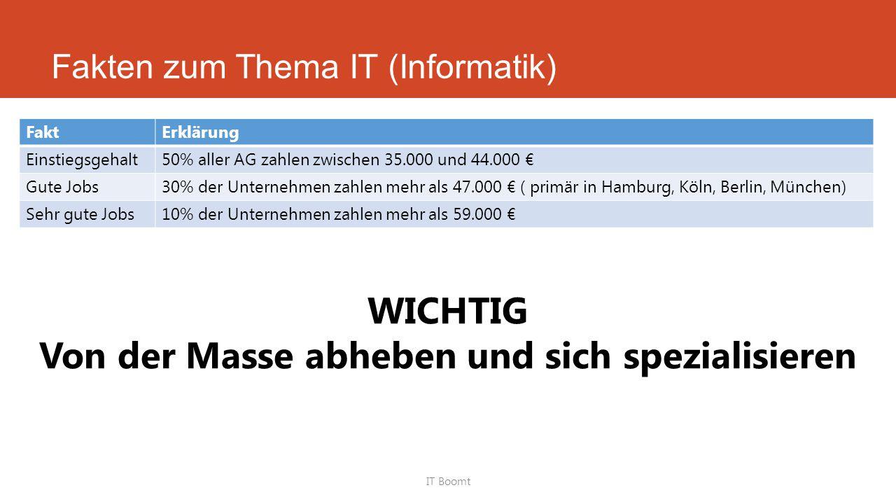 Fakten zum Thema IT (Informatik)