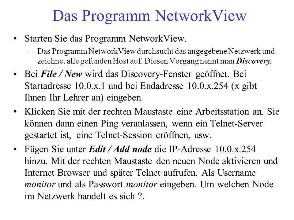 Das Programm NetworkView