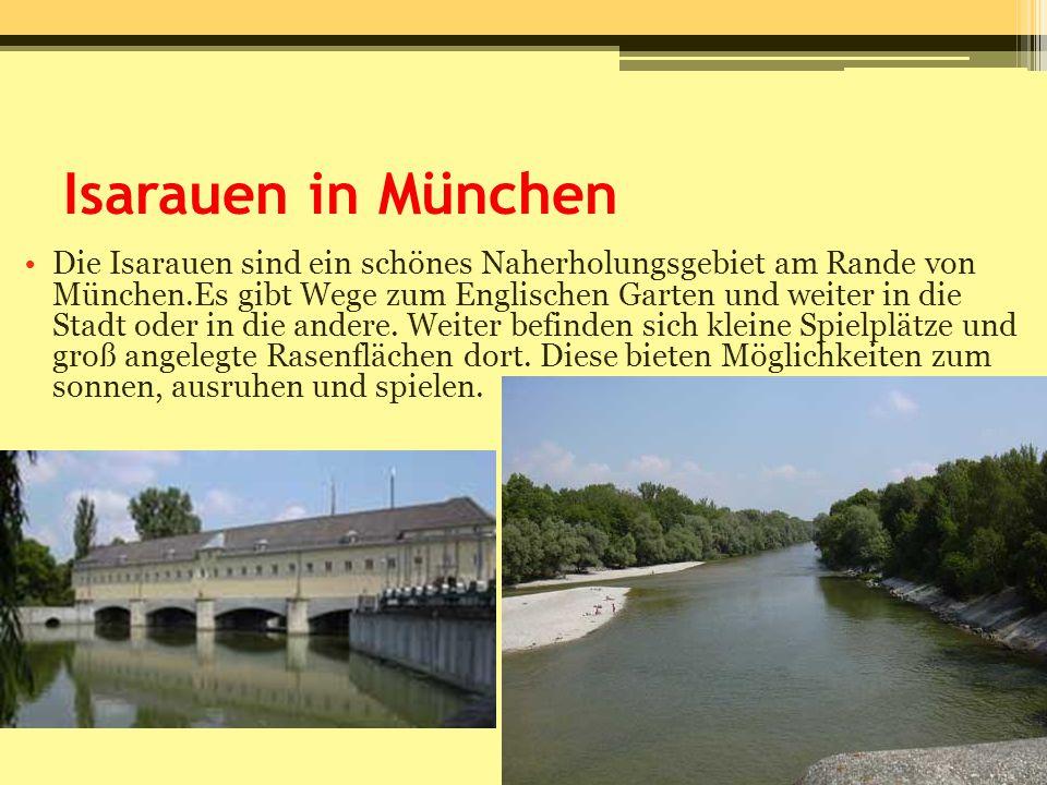 Isarauen in München