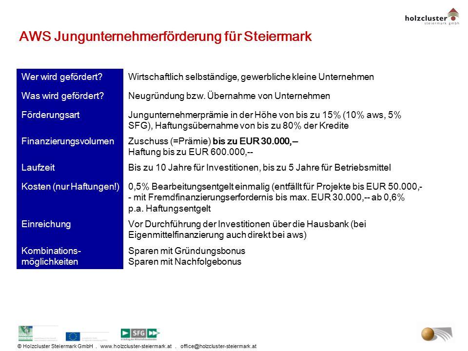 AWS Jungunternehmerförderung für Steiermark