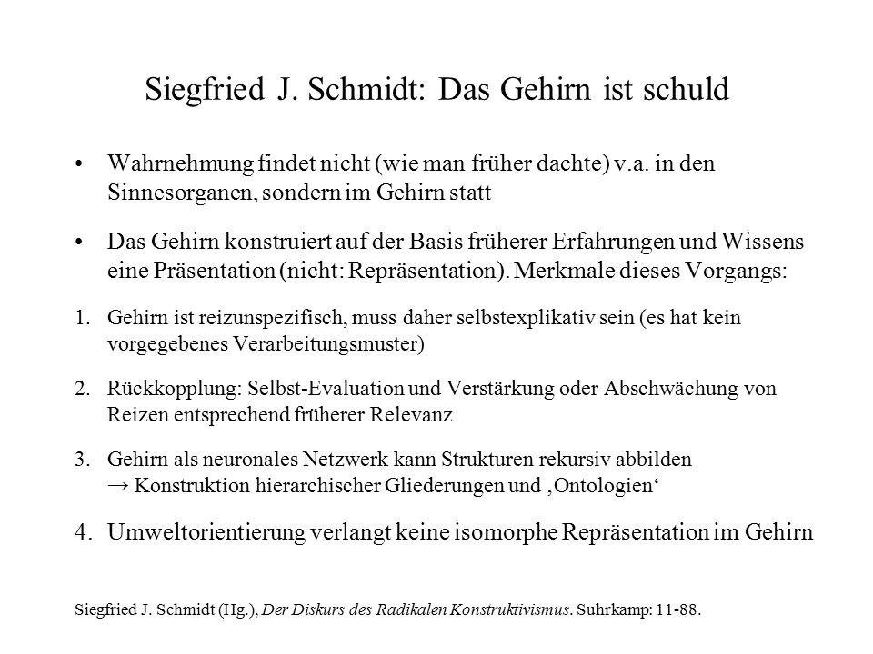 Siegfried J. Schmidt: Das Gehirn ist schuld