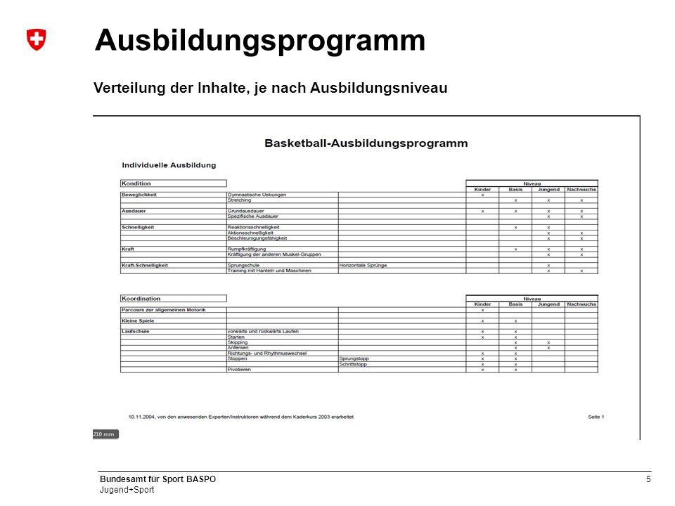 Ausbildungsprogramm Verteilung der Inhalte, je nach Ausbildungsniveau