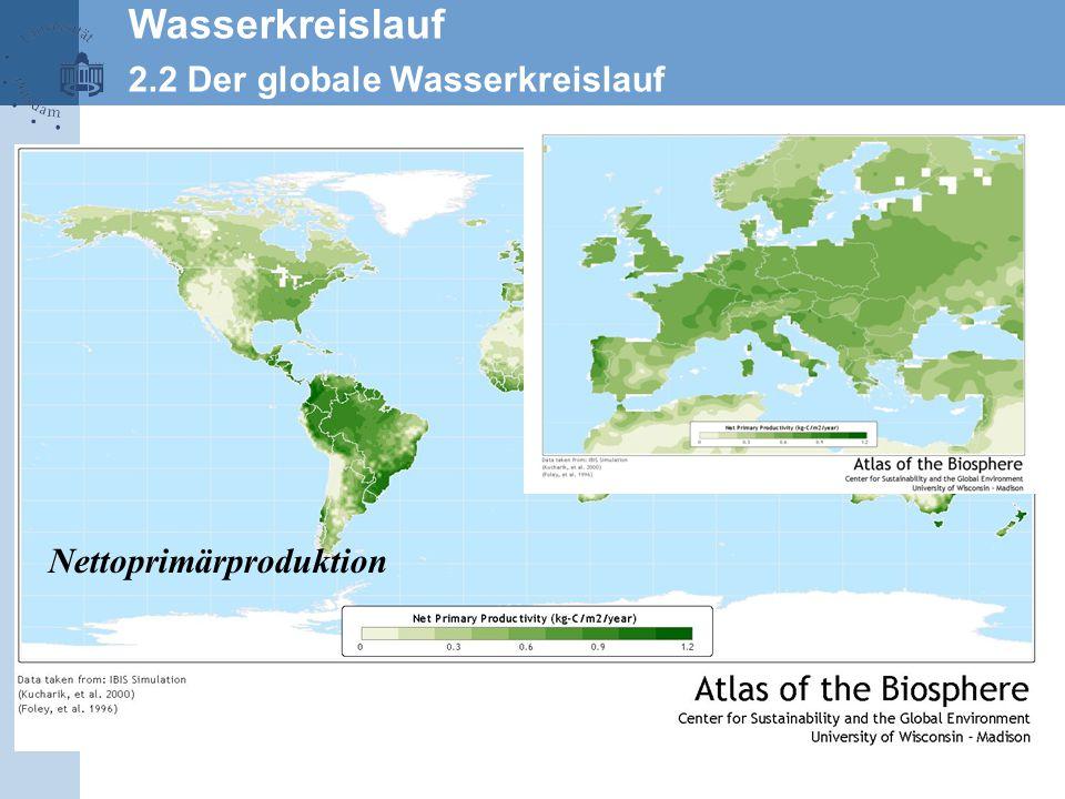 Wasserkreislauf 2.2 Der globale Wasserkreislauf Nettoprimärproduktion
