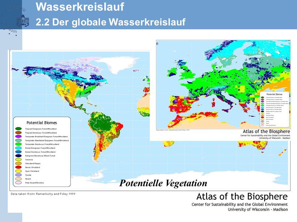 Wasserkreislauf 2.2 Der globale Wasserkreislauf Potentielle Vegetation