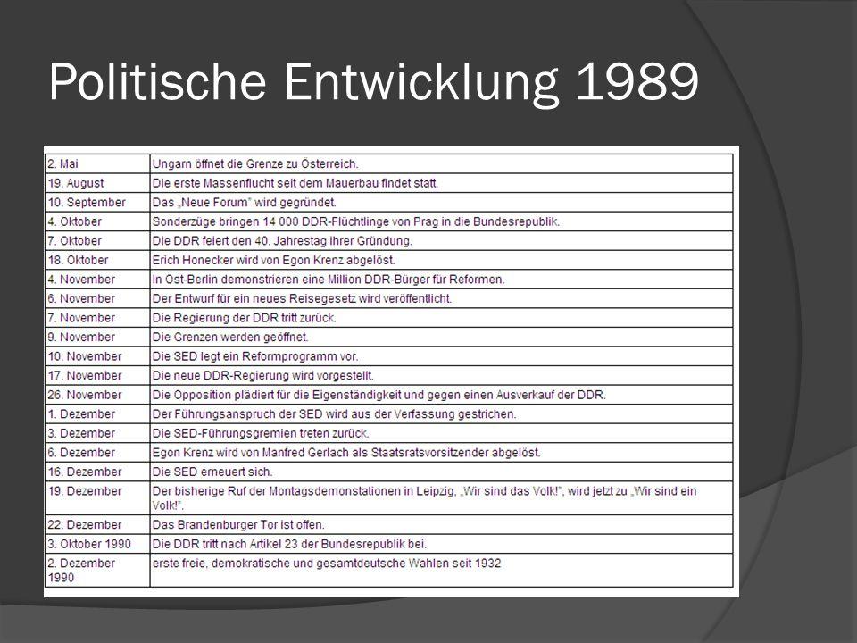 Politische Entwicklung 1989