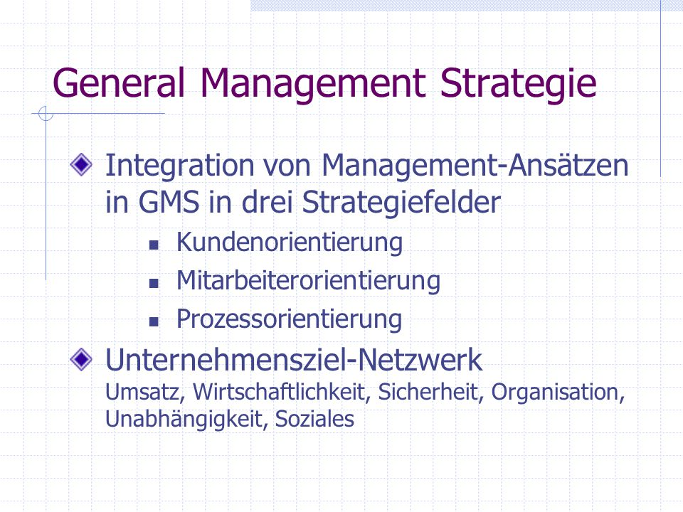 General Management Strategie