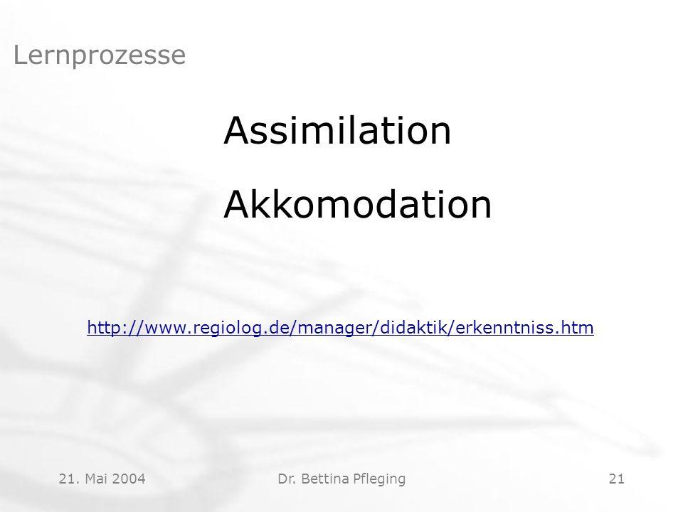 Assimilation Akkomodation Lernprozesse
