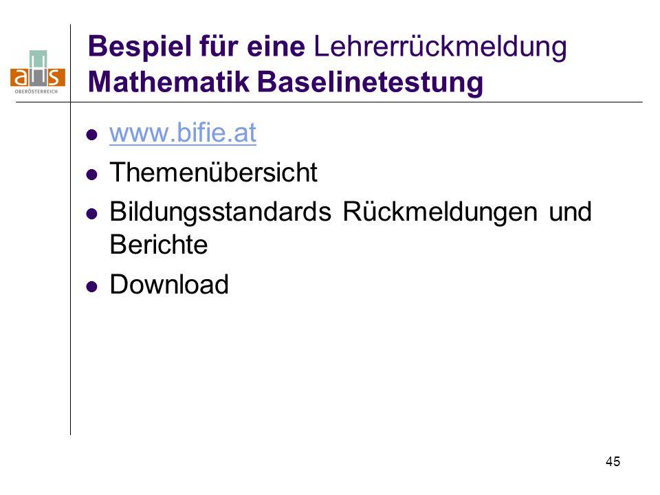 Bespiel für eine Lehrerrückmeldung Mathematik Baselinetestung