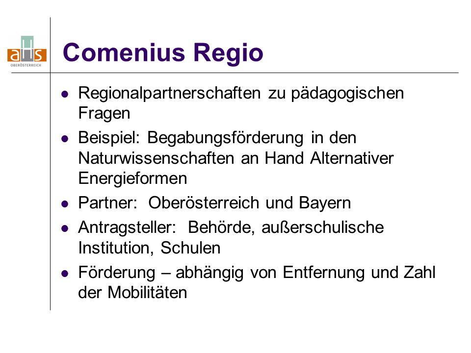 Comenius Regio Regionalpartnerschaften zu pädagogischen Fragen