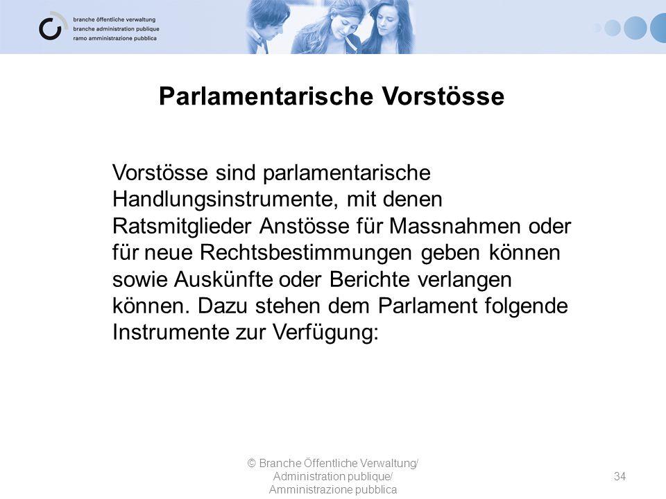 Parlamentarische Vorstösse