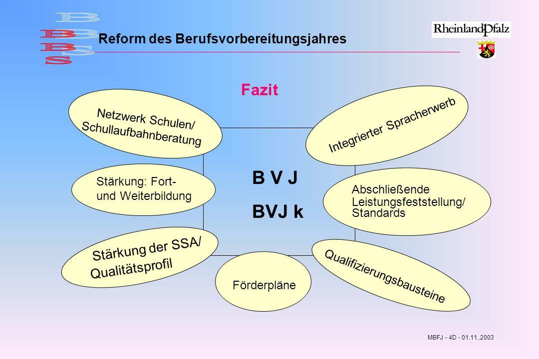 Reform des Berufsvorbereitungsjahres