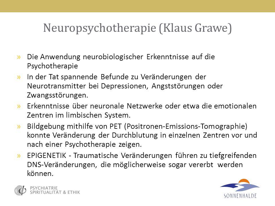 Neuropsychotherapie (Klaus Grawe)