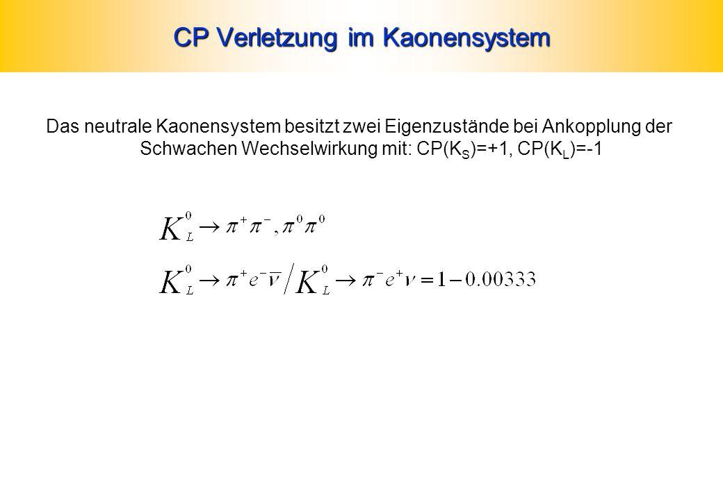 CP Verletzung im Kaonensystem