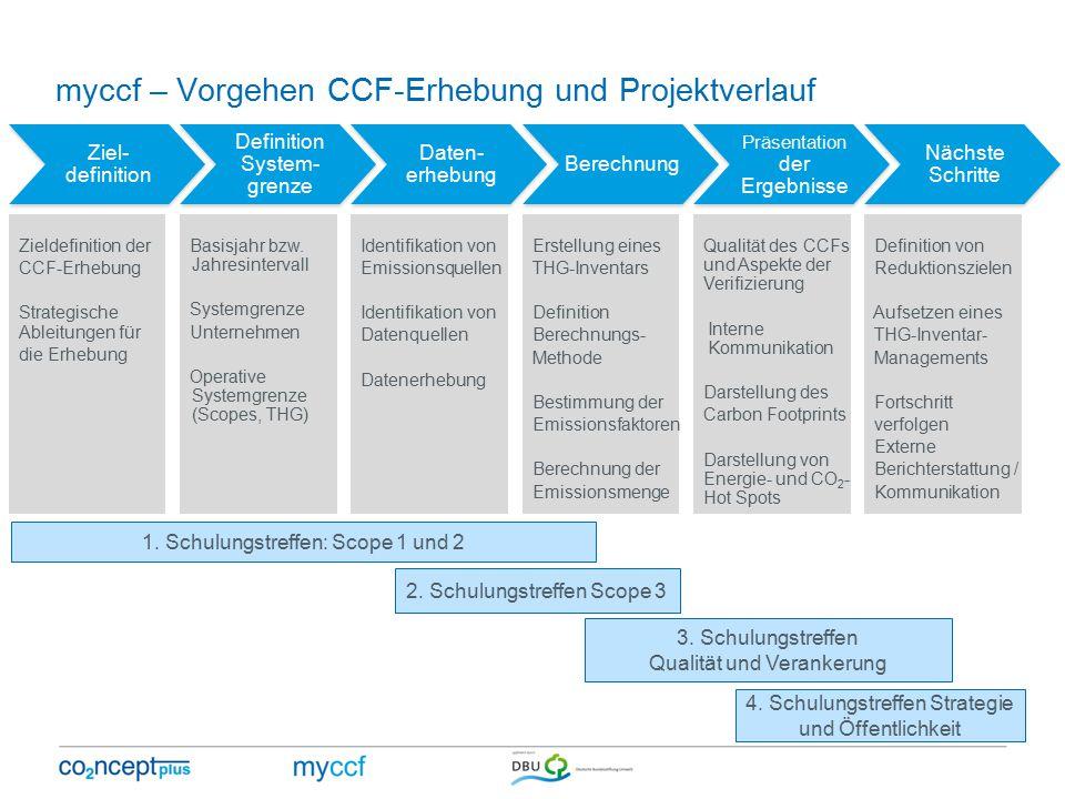 myccf – Vorgehen CCF-Erhebung und Projektverlauf