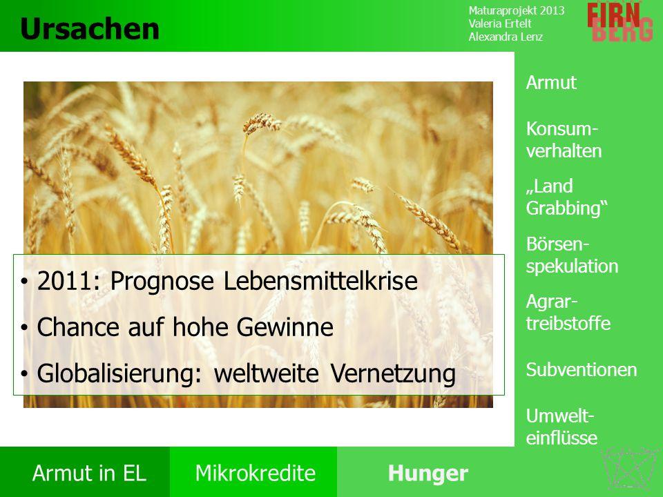 Ursachen 2011: Prognose Lebensmittelkrise Chance auf hohe Gewinne