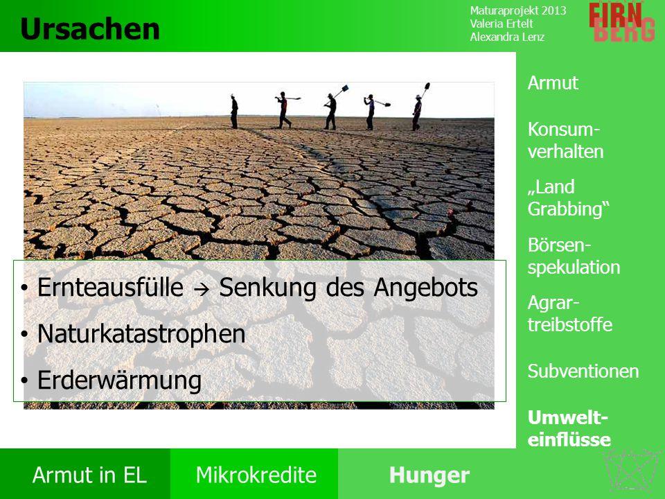 Ursachen Ernteausfülle  Senkung des Angebots Naturkatastrophen
