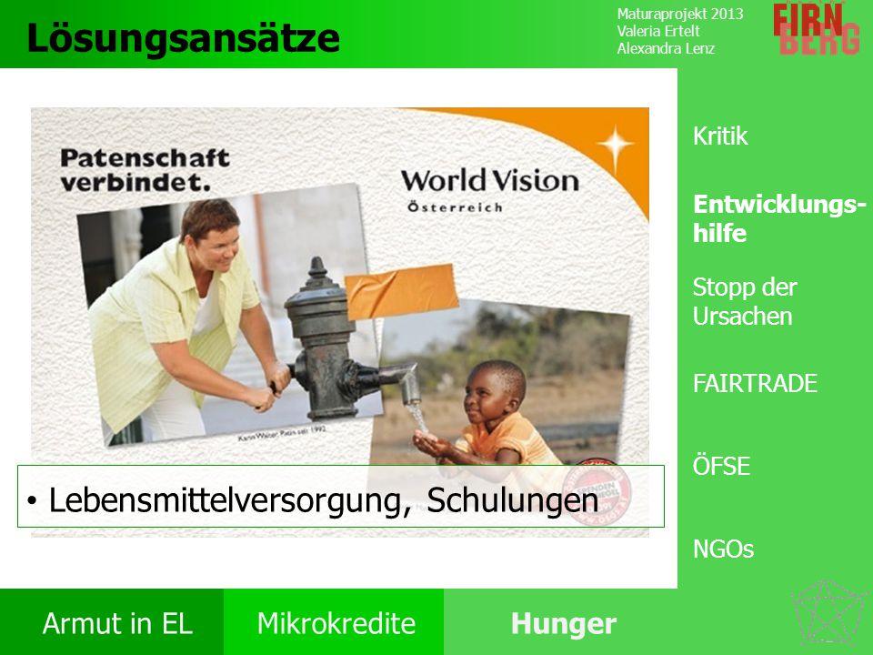 Lösungsansätze Lebensmittelversorgung, Schulungen Kritik