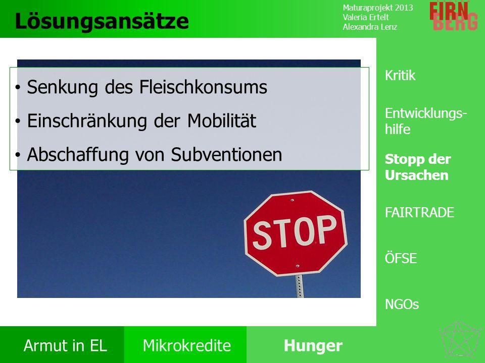 Lösungsansätze Senkung des Fleischkonsums Einschränkung der Mobilität