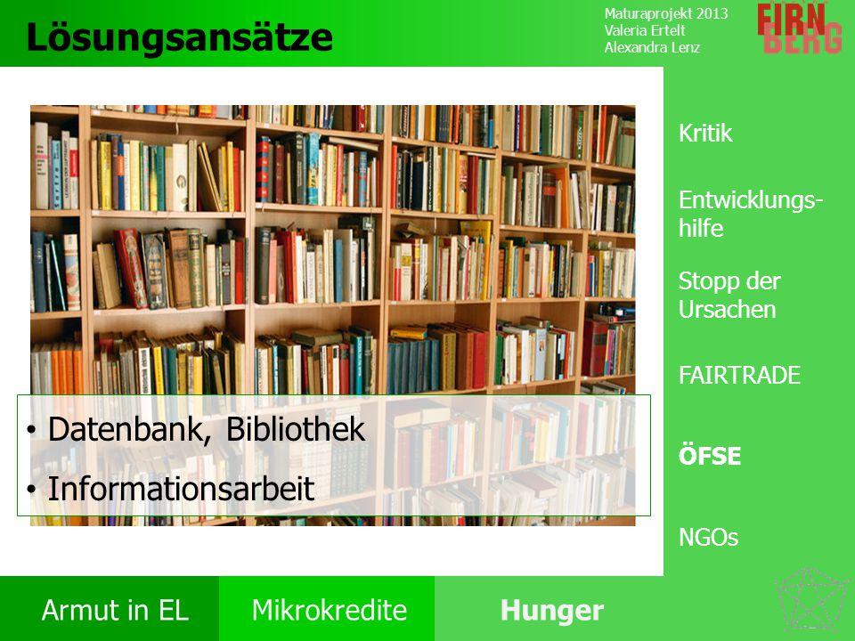 Lösungsansätze Datenbank, Bibliothek Informationsarbeit Kritik