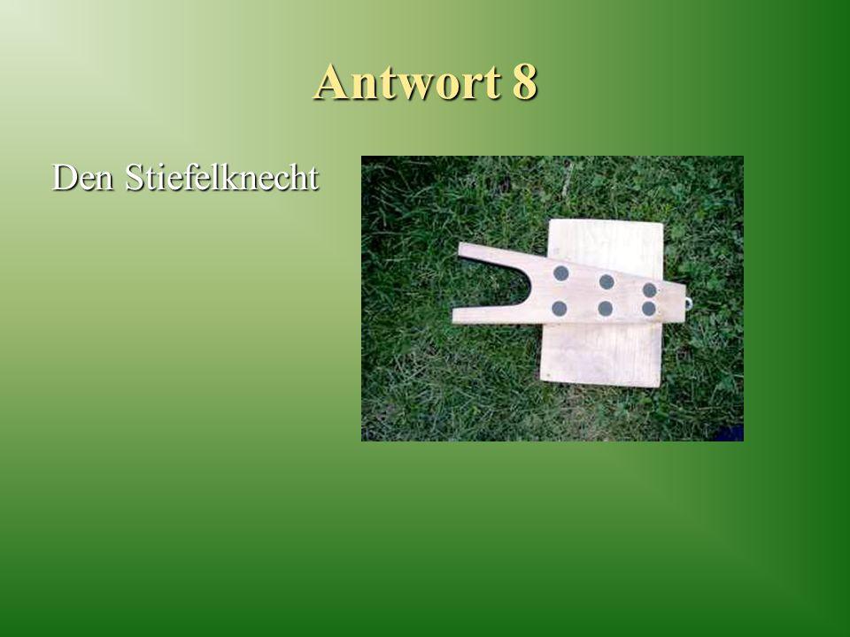 Antwort 8 Den Stiefelknecht