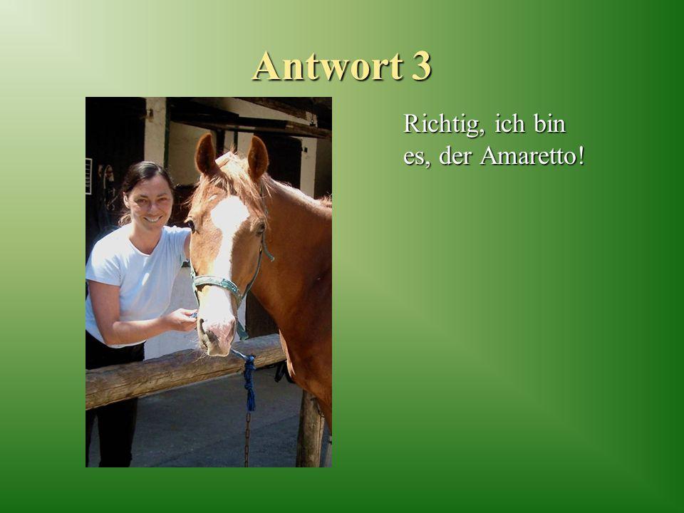 Antwort 3 Richtig, ich bin es, der Amaretto!
