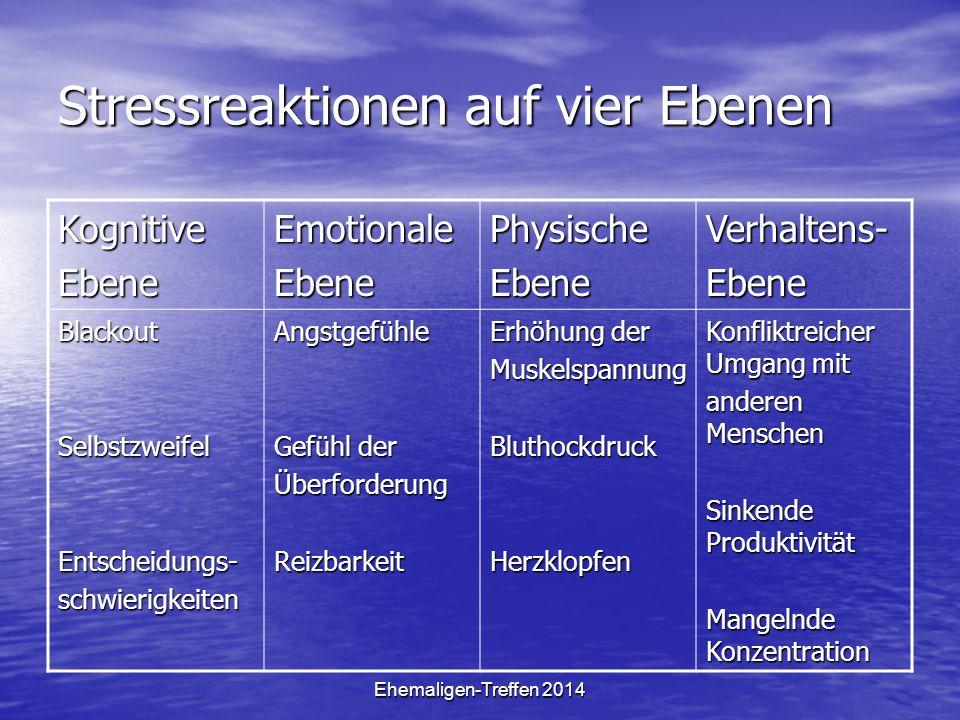 Stressreaktionen auf vier Ebenen