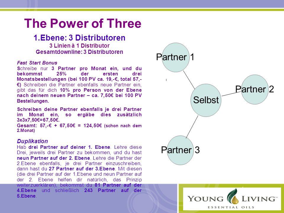 Gesamtdownline: 3 Distributoren