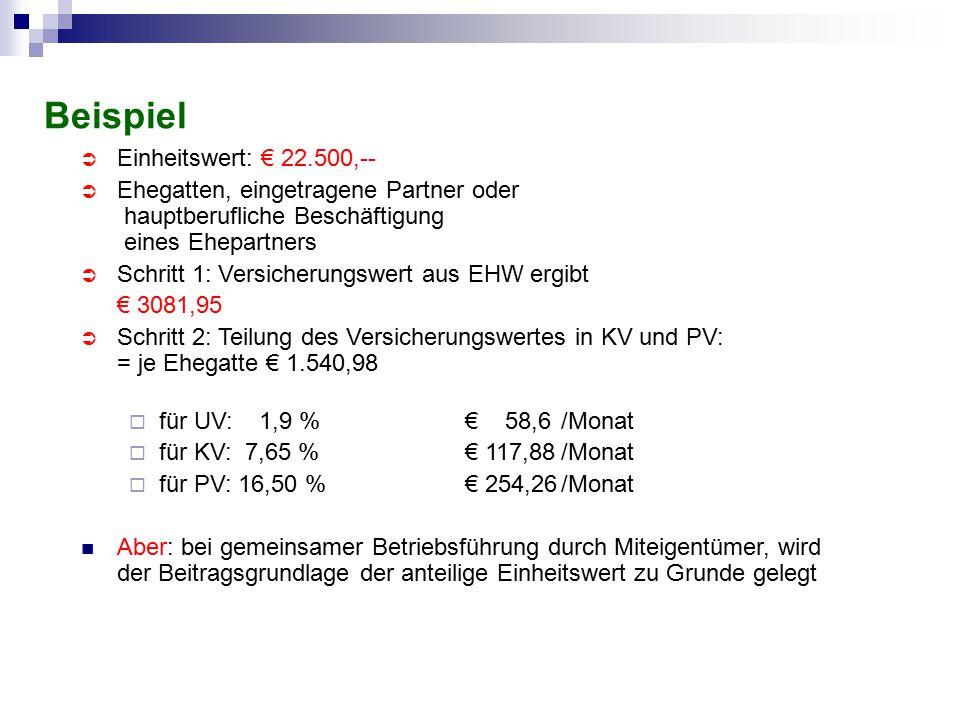 Beispiel Einheitswert: € 22.500,--