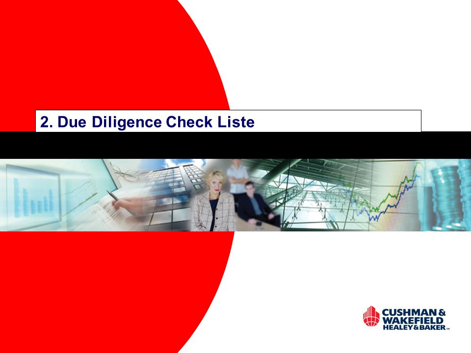 2. Due Diligence Check Liste