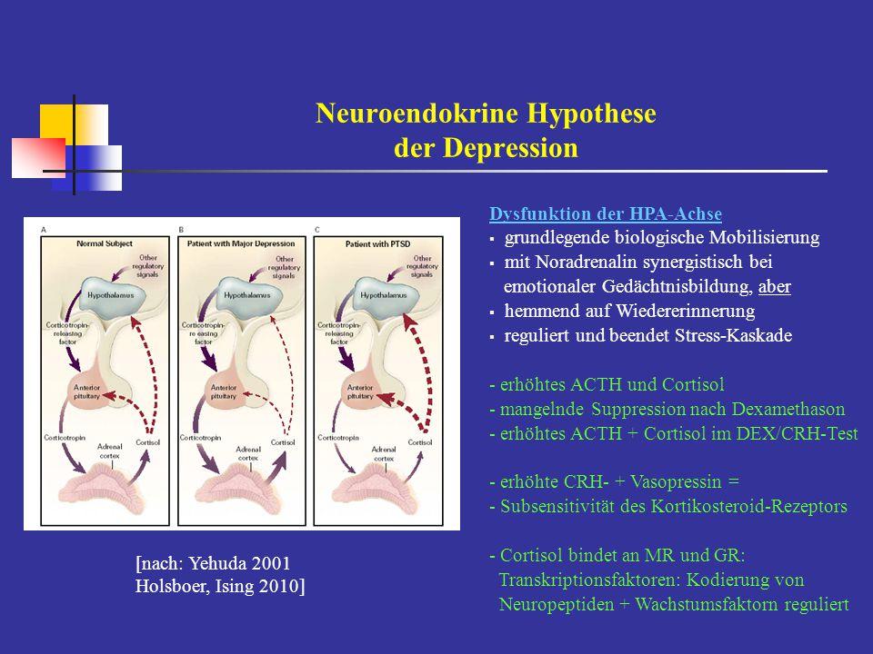 Neuroendokrine Hypothese der Depression