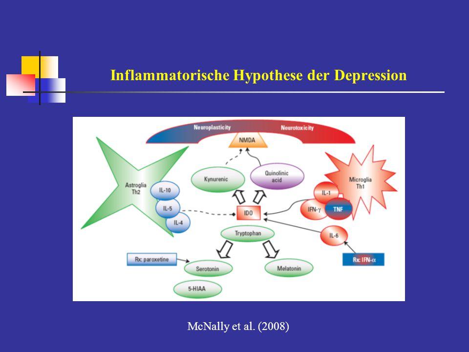 Inflammatorische Hypothese der Depression