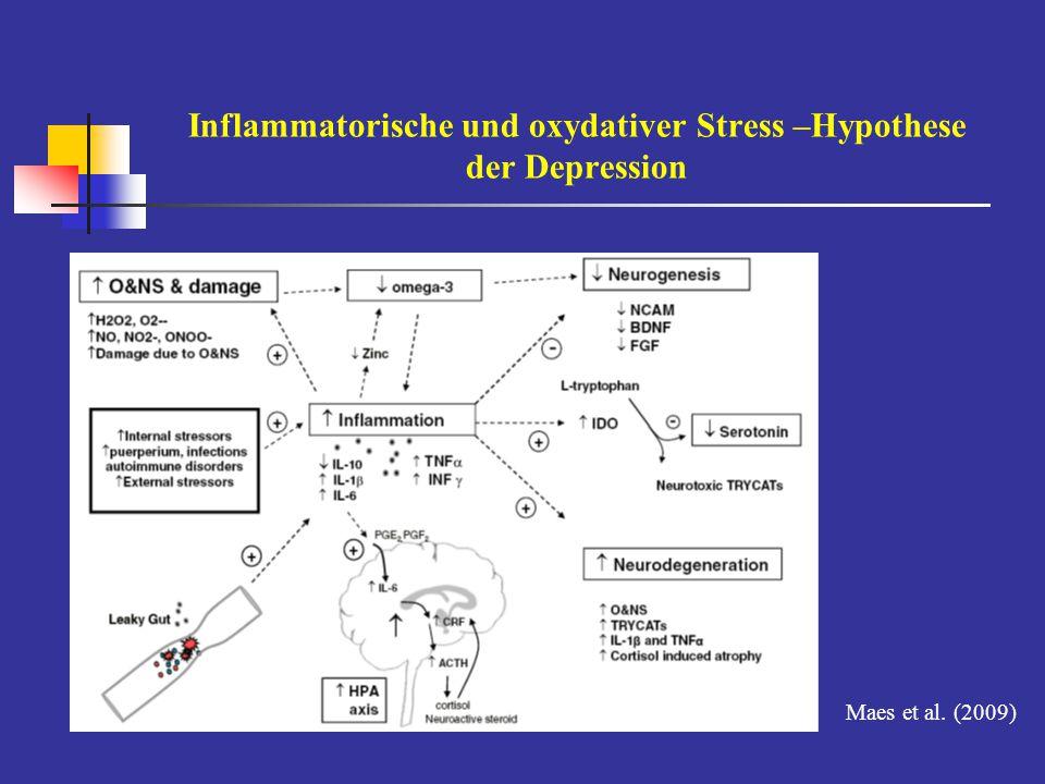 Inflammatorische und oxydativer Stress –Hypothese der Depression