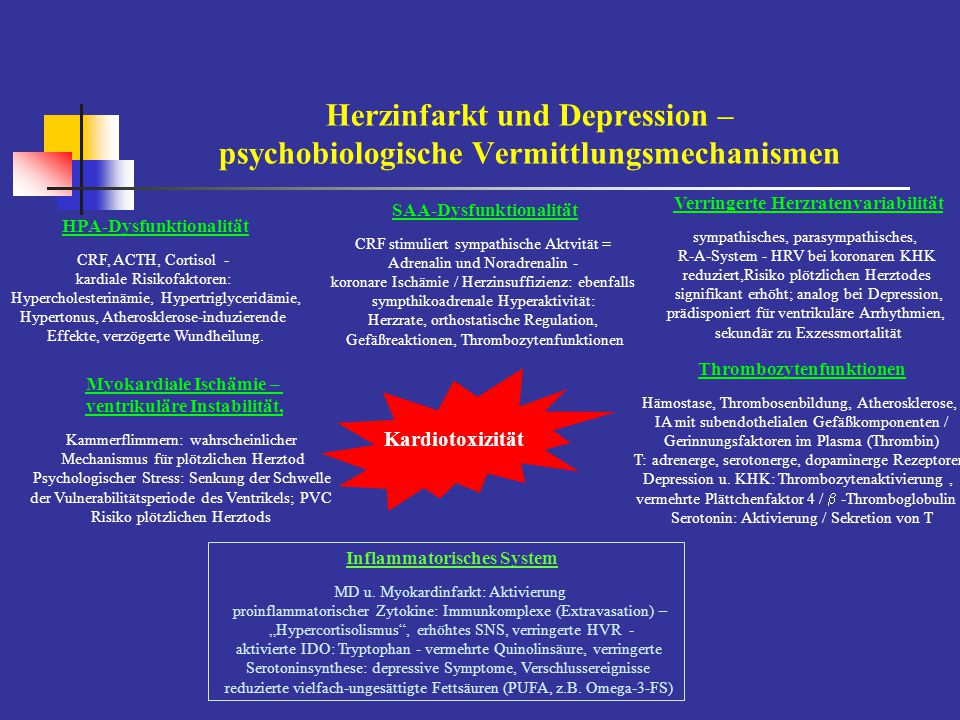 Herzinfarkt und Depression – psychobiologische Vermittlungsmechanismen
