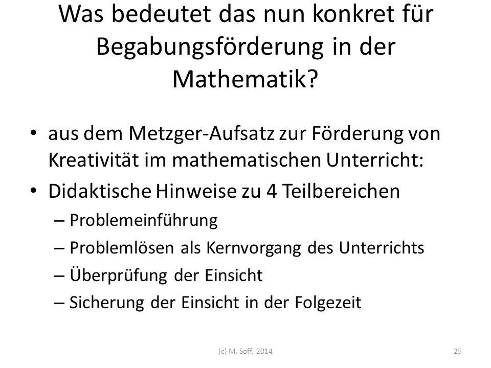 Was bedeutet das nun konkret für Begabungsförderung in der Mathematik