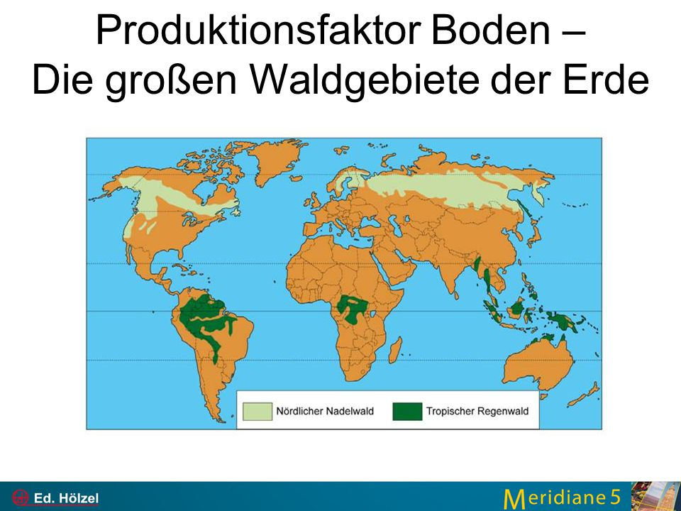 Produktionsfaktor Boden – Die großen Waldgebiete der Erde