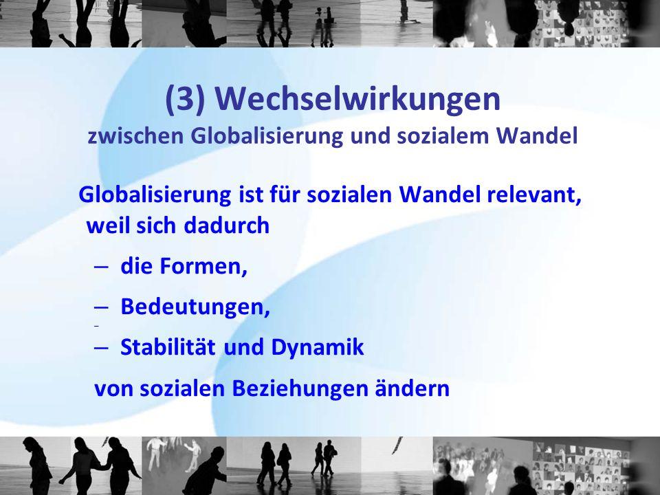 (3) Wechselwirkungen zwischen Globalisierung und sozialem Wandel