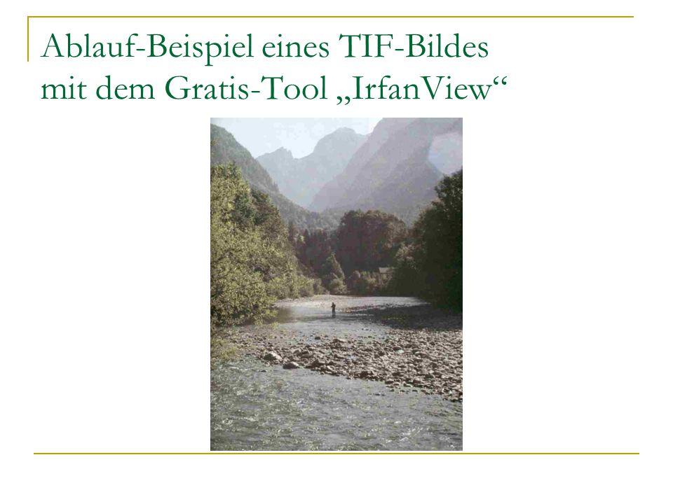 """Ablauf-Beispiel eines TIF-Bildes mit dem Gratis-Tool """"IrfanView"""