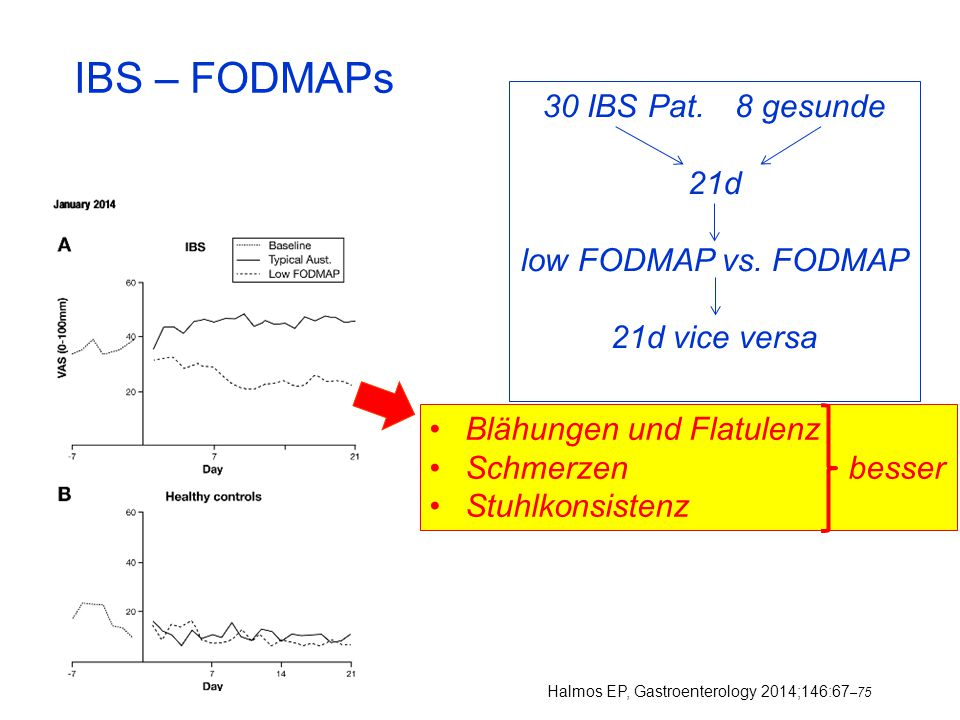 IBS – FODMAPs 30 IBS Pat. 8 gesunde 21d low FODMAP vs. FODMAP