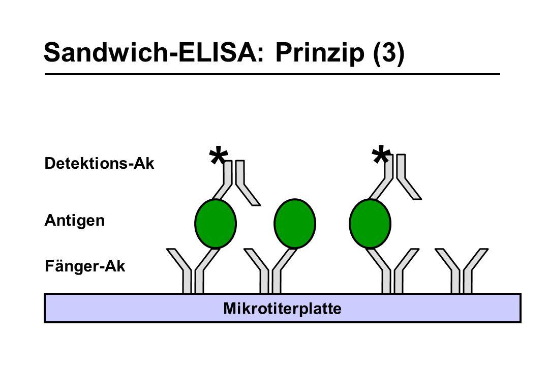 * * Sandwich-ELISA: Prinzip (3) Detektions-Ak Antigen Fänger-Ak