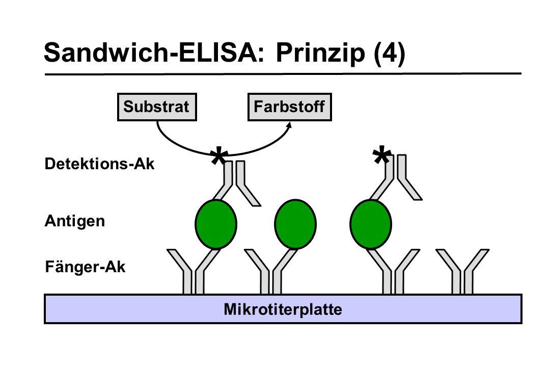 * * Sandwich-ELISA: Prinzip (4) Substrat Farbstoff Detektions-Ak