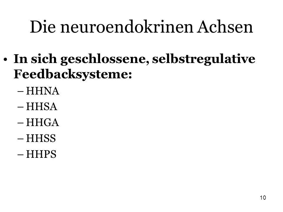 Die neuroendokrinen Achsen