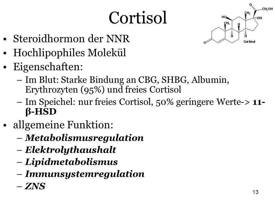 Cortisol Steroidhormon der NNR Hochlipophiles Molekül Eigenschaften: